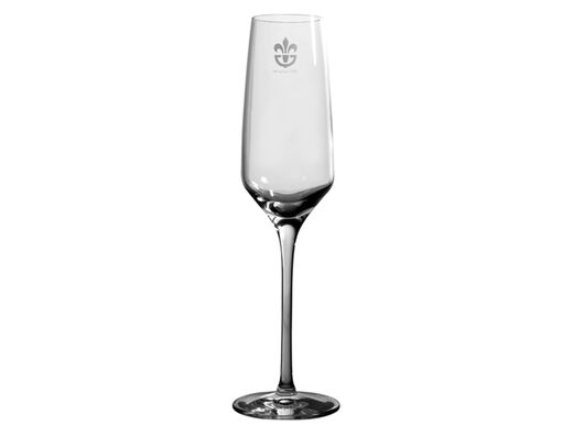 Experience Champagne glass, 18cl